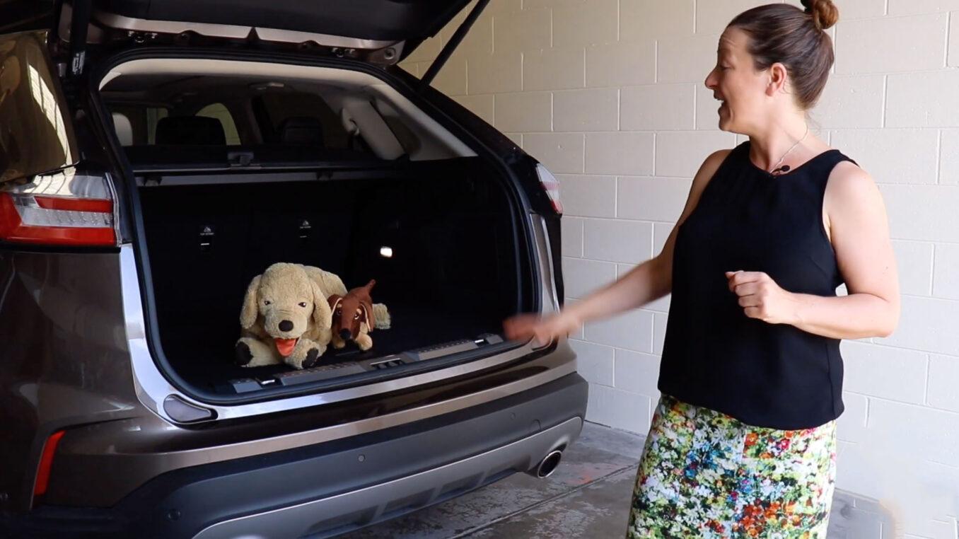 Ford Endura Titanium top family features
