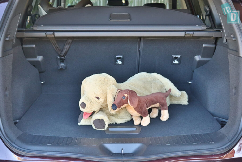 Renault Koleos Intens 2020 with dogs in the boot