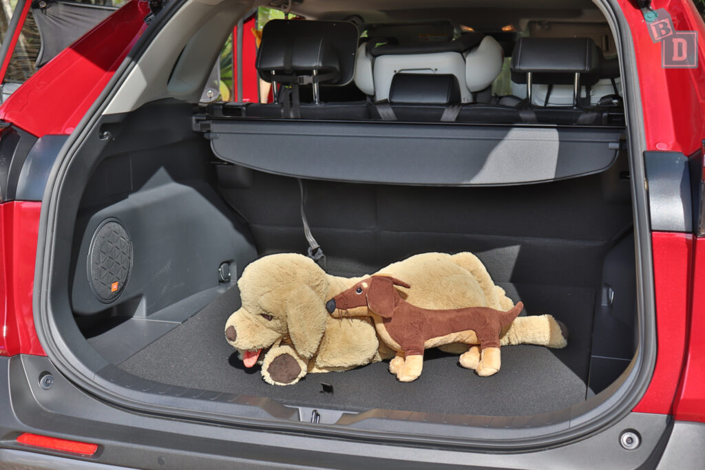 2021 Toyota RAV4 Hybrid Cruiser boot space with large dog and small dog